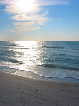 Indian Rocks Beach Florida Rentals Indian Rocks Beach Vacation Condos